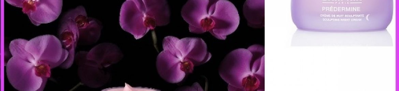 Il trattamento notturno ai fiori ringiovanenti